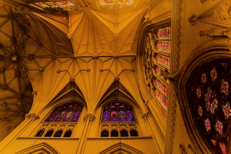 celling St. Patricks Cathedral