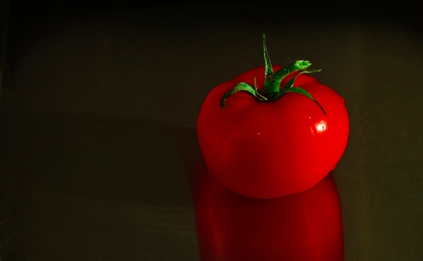 The tomato ripe of the vine